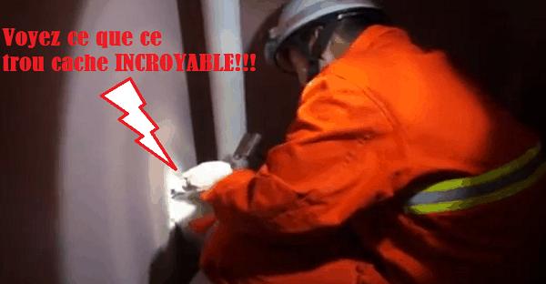chien emprisonné derrière un mûr sauvetage