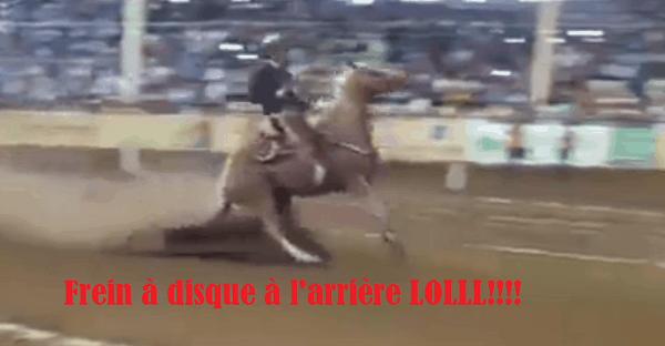 Ce cheval a des freins arrières