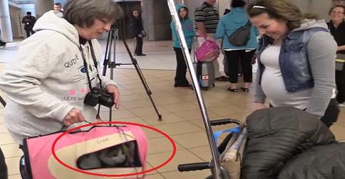 femme qui retrouve son chat
