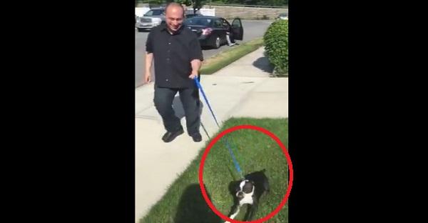 Il retrouve une chienne perdue . Attendez de voir sa réaction quand elle retrouve son maître. MAGNIFIQUE!
