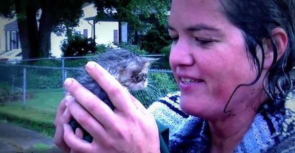 Voyez ce que cette femme a fait pour sauver ce petit chaton. Un MAGNIFIQUE geste!