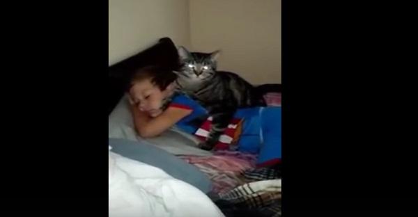 Cet enfant est parti pour quelques jours. Voyez la réaction de son chat à son retour. MIGNON!!