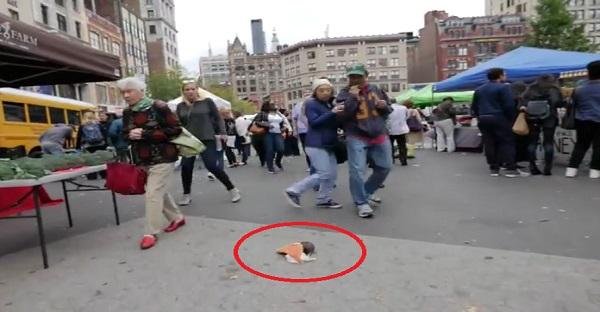 Quand un rat se promène avec une pizza à New York. À VOIR ABSOLUMENT!