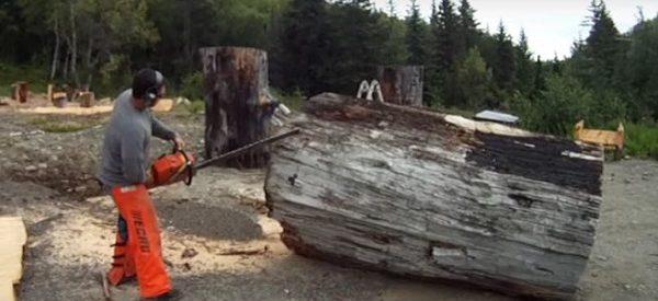 sculpture-avec-arbre