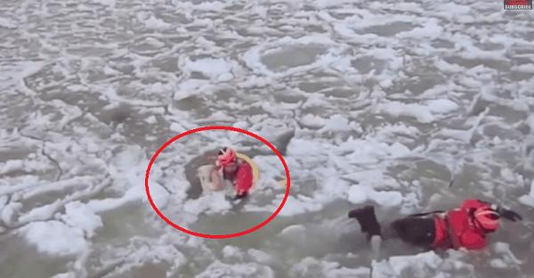 sauvetage chien eau glacée vidéo