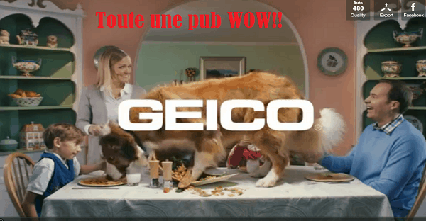 Une pub de Geico extraordinaire.