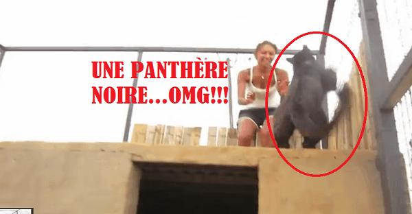 une panthère noire retrouve sa gardienne