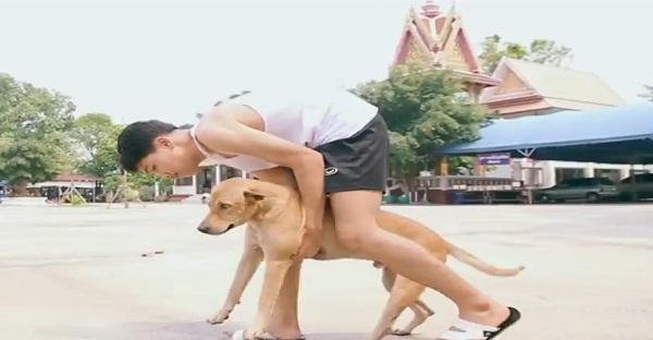 Voyez ce que ce jeune fait avec ce chien. Il est ADMIRABLE!