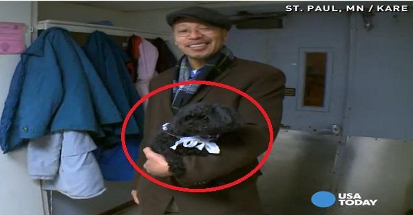 Ce chien prend l'ascenseur tous les jours. La raison va vous BOULEVERSER!