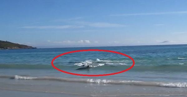Il filme quelque chose près de la plage. La suite est INCROYABLE, À VOIR!