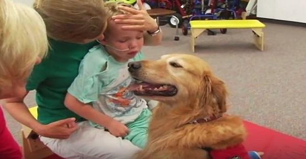 Quand un chien devient l'espoir ultime pour la guérison. ÉMOUVANT À VOIR!
