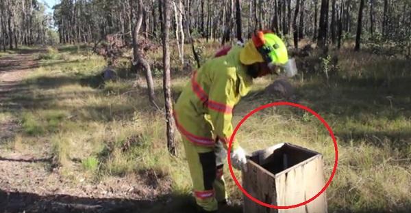 Ce pompier entend un bruit venant d'une boîte. Ce qu'il trouve est CHOQUANT!