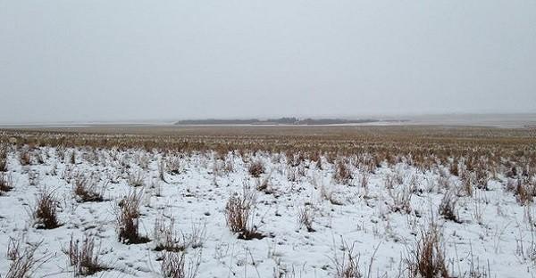 Hé oui il y a bien 500 moutons sur cette photo. LES VOYEZ-VOUS?