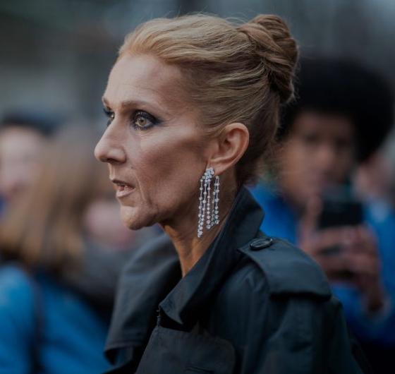 Céline Dion: Ces fans ont réagi à ces dernières photos. Le verdict ...